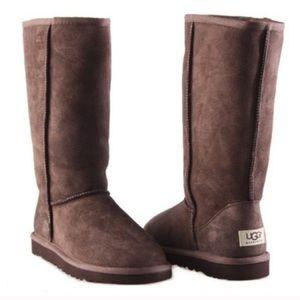 Tall Chocolate Ugg Boots